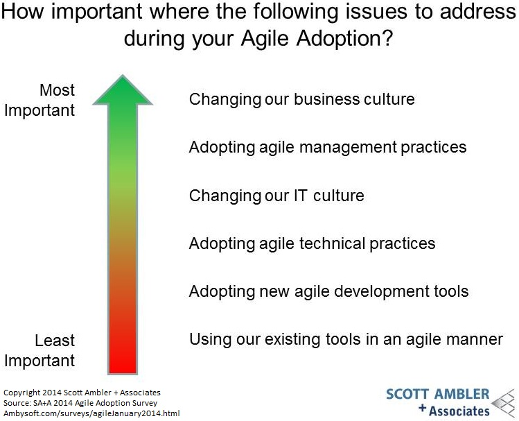 Importance of issues to agile adoption
