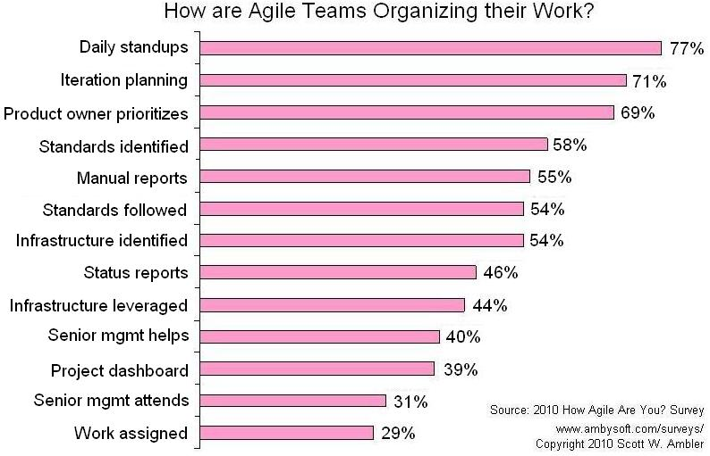Agile Criterion: Self organization
