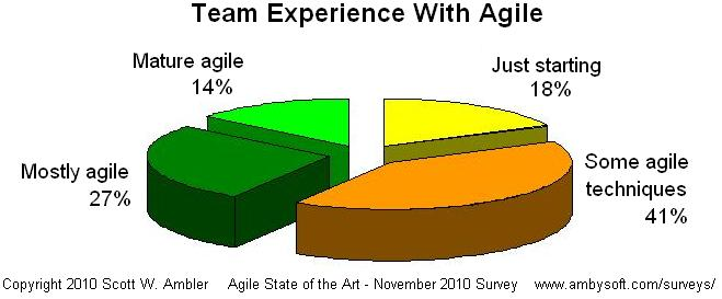 Amount of team experience in agile